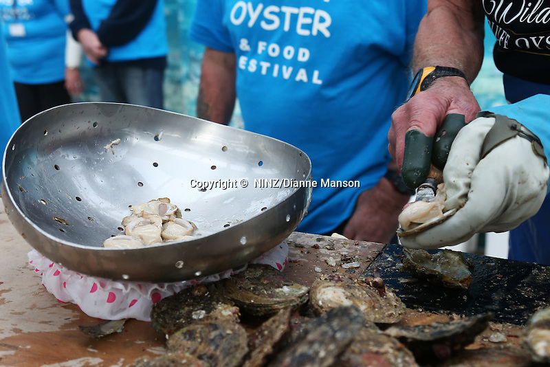 Keith Dawson ( 80 years old ), of Invercargill, shucks oysters during the oyster opening competition at the Bluff Oyster and Food Festival, Bluff, New Zealand, Saturday, May 21, 2016. Credit:  Dianne Manson