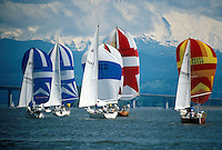 sailboats on the Columbia river with colorful spinnakers out. boat, boats, water sports, sails, competition. sailboat regatta. Oregon, Columbia River.