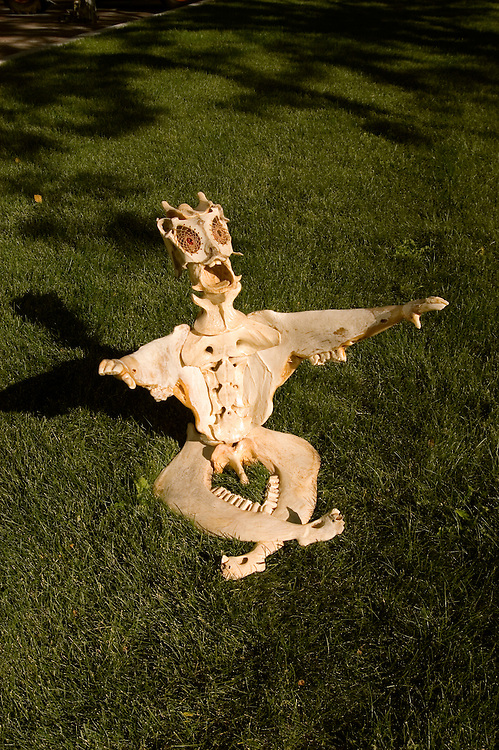 Bone art by Jeff Hammond, property released, Cedar City, Utah, UT, Fall Arts Festival, Southwest America, American Southwest, US, United States, Image ut419-18608, Photo copyright: Lee Foster, www.fostertravel.com, lee@fostertravel.com, 510-549-2202