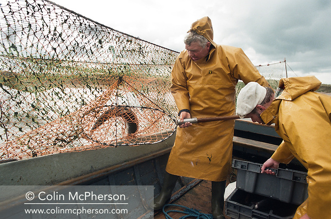 Bob Ritchie (left) fishes one of his 'jumper' nets for wild Atlantic salmon at Kinnaber, Angus assisted by Jim Mitchell. The once-thriving Scottish salmon netting industry fell into decline in the 1970s and 1980s when the numbers of fish caught reduced due to environmental and economic reasons. By 2007, only a handful of men still caught wild salmon and sea trout using traditional methods, mainly for export to the Continent.