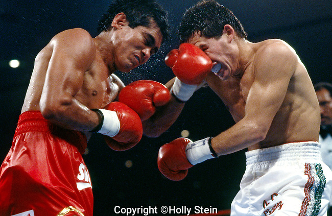Julio Cesar Chavez v. Jose Luis Ramirez..WBC and WBA Lightweight title..Chavez W, fight stopped in 11th round, out of 12..