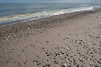 Strand, Spülsaum, Sandstrand mit Steinen, Nordsee, Küste