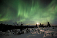 Winter landscape of Northern Lights (Aurora Borealis) as they dance over the tundra of interior Alaska with a rising moon just north of Fairbanks at Cleary Summit<br /> <br /> Photo by Jeff Schultz/SchultzPhoto.com  (C) 2016  ALL RIGHTS RESVERVED