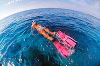snorkeler over coral reef.Kiholo Bay, Big Island, Hawaii (Pacific)