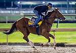 10-31-18 Breeders Cup Preparations