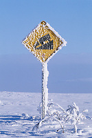 Frost covered sign along the Dalton Highway, Alaska.