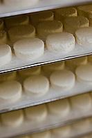 Europe/Europe/France/Midi-Pyrénées/46/Lot/Saint-Sulpice: Ferme du Mas de Thomas - Préparation des fromages de chêvre AOP Rocamadour