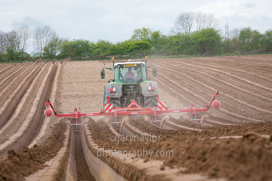 Using a Grimme bedforma for carrots - Nottinghamshire, April