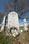 Historic 19th century Gold Rush era City Cemetery, Chinese Camp, Calif...Elisa Ford