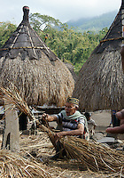 elder villager Moses helps in finishing the roof of a house as part of sacred celebrations of buidling a house, center of matriarchal society of Ngada people, village Bena near Bajawa,  Flores, Indonesia
