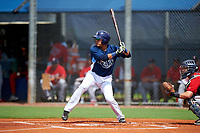 GCL Rays second baseman Jonathan Aranda (10) at bat during the first game of a doubleheader against the GCL Twins on July 18, 2017 at Charlotte Sports Park in Port Charlotte, Florida.  GCL Twins defeated the GCL Rays 11-5 in a continuation of a game that was suspended on July 17th at CenturyLink Sports Complex in Fort Myers, Florida due to inclement weather.  (Mike Janes/Four Seam Images)