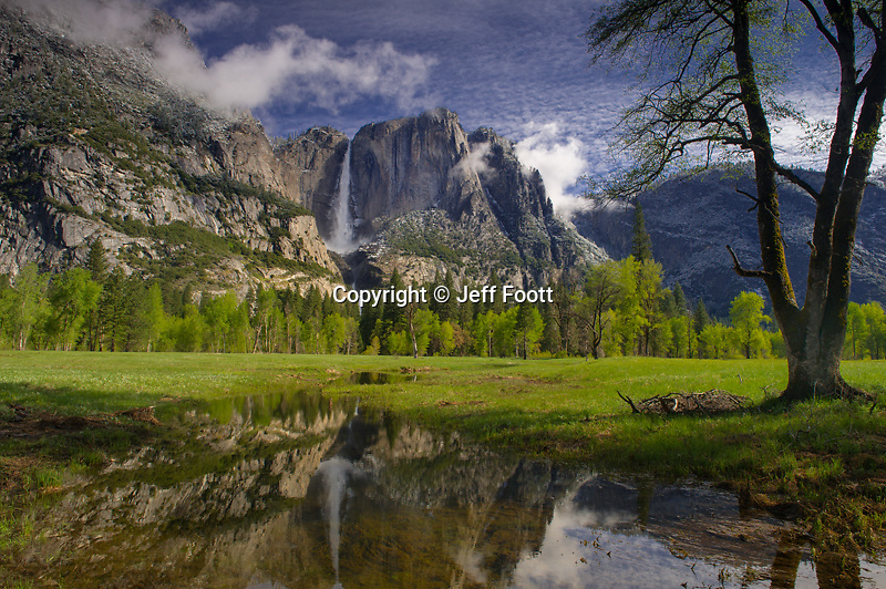Yosemite Falls and spring   pool in meadow in Yosemite National Park.