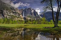 Yosemite Falls and spring   pool in meadow in Yosemite National Park.