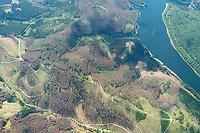 Waldsterben im Harz : DEUTSCHLAND, NIEDERSACHSEN, (GERMANY, SAXONY-ANHALT, BROCKEN), 21.05.2020: Waldsterben im Harz