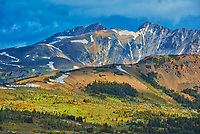 The Alpine region of the Canadian Rocky Mountains.  Sunshine Meadows. <br />