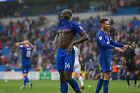 Sol Bamba of Cardiff City looks frustrated at full time of the goalless Sky Bet Championship match between Cardiff City and Derby County at Cardiff City Stadium, Cardiff, Wales on 30 September 2017. Photo by Mark  Hawkins / PRiME Media Images.