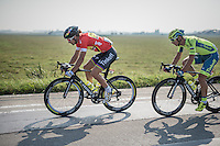 Peter Sagan (SVK/Tinkoff)<br /> <br /> 12th Eneco Tour 2016 (UCI World Tour)<br /> stage 3: Blankenberge-Ardooie (182km)