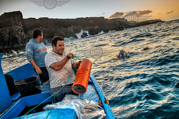 Fishermen bait their traps in order to capture Moray Eel that live in the rocky sea bed off the island. /Felix Features