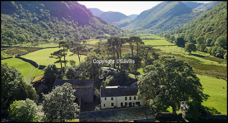 BNPS.co.uk (01202 558833)<br /> Pic: Savills/BNPS<br /> <br /> Buy one get 413 sheep free! - stunning farm in beautiful Borrowdale in the heart of the lake district for sale.<br /> <br /> Lovers of the great outdoors can get their own stretch of green and pleasant land with this idyllic Lakeland farm - which comes with a flock of sheep thrown in.<br /> <br /> Thorneythwaite Farm has the breathtaking backdrop of Borrowdale Valley in the Lake District and comes with 316 acres of land to explore.<br /> <br /> But if that's not enough it's also perfect for fell walking as it is close to one of the main paths that ascend Scafell Pike, England's highest mountain.<br /> <br /> The stunning land is on the market for the first time in almost 100 years and will be sold by Savills at a public auction on August 9 with a guide price of &pound;1.55million.