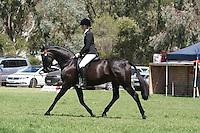 Rider 17 U21