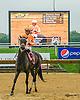 I'm Not Joking winning at Delaware Park on 10/8/16