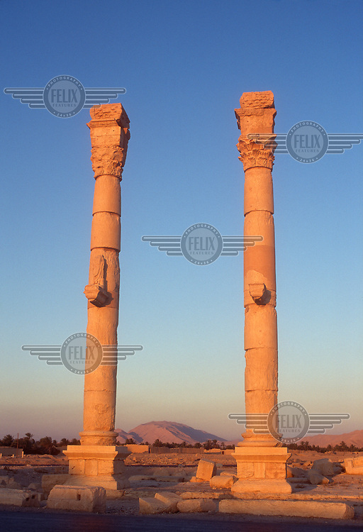 Columns in the ancient ruins of Palmyra, with trees in the oasis visible behind. Palmyra (or Tadmor in Arabic) dates back to the Neolithic period and was first mentioned in the second millennium BC as a caravan stop. It later came under the Seleucid Empire and then under the Roman Empire.<br /> In May 2015 Islamic State (IS) forces fighting the Syrian government of President Assad took control of the modern settlement of Tadmur and the historic site. There are fears that the priceless treasures could fall victim to IS's iconoclastic destruction that has seen museums and ancient sites across Syria and Iraq destroyed.