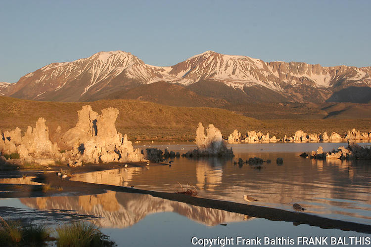 Mono Lake Tufa State Reserve at sunrise