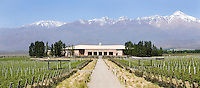 Wines of Mendoza, Argentina<br /> Photo by Jesus Aranguren/jeaphoto.com