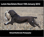 Luton Hoo Estate Shoot 19th January 2012