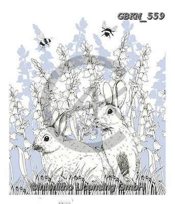 Kate, EASTER, OSTERN, PASCUA, paintings+++++Easter rabbits.,GBKM559,#e#, EVERYDAY ,rabbit,rabbits,