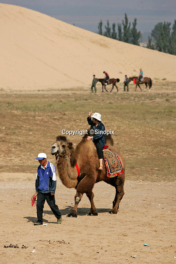 Chinese tourist rides a camel near the giant sand dunes at Tian Mo (Sky Desert) by Long Bao Shan Village in Hebei Provence, north of Beijing. The village is also at an area that has large sand dunes that have formed nearby the village, that have been around as long as anyone can remember..25 Sep 2005