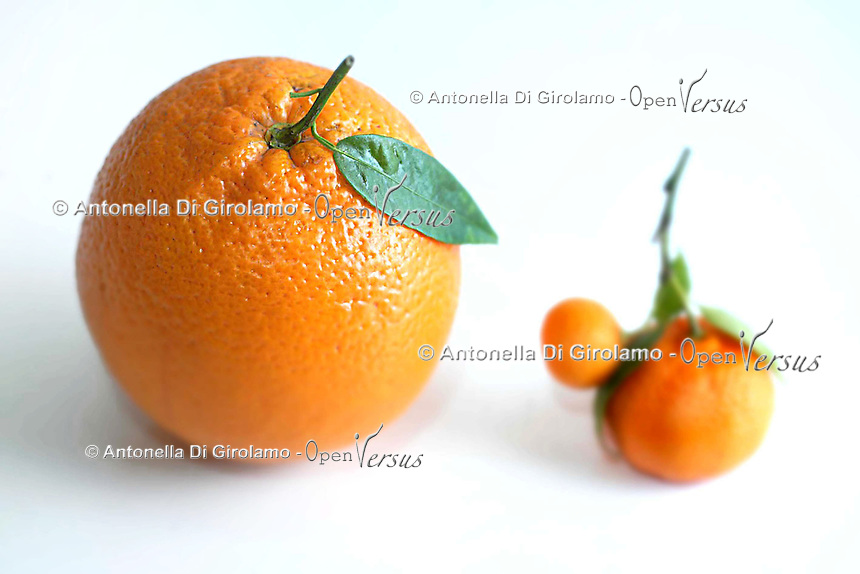 Arance di diverse misure. Oranges of different sizes...