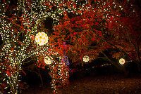 Holiday Light Display at Garvan Wood Gardens in Hot Springs Arkansas and features More than 4 million lights decorating the 17 acres of woodland gardens.