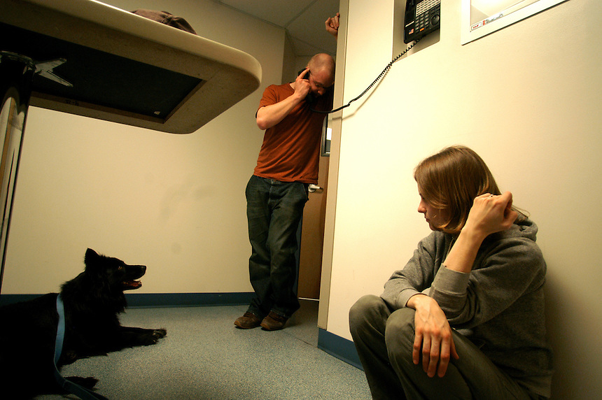 "Doug Cooper of Newbury, center, calls his mother as his wife, Leah Cooper, and their dog, Natty, sit on the floor of an examination room. The couple owns three dogs, all of which attacked a porcupine and received quills in their faces at 9:15 on a Sunday night. Because the clinic estimated costs into the thousands of dollars, Doug Cooper asked his mother for financial assistance. ""I'm just calling for backup,"" he said. Fortunately, the actual costs were much lower than the estimate and the Cooper's were able to afford it without help...Coopers: 603 938-6262..vet day 7. .April 10, 2005.(Concord Monitor photo/Danny Gawlowski)."