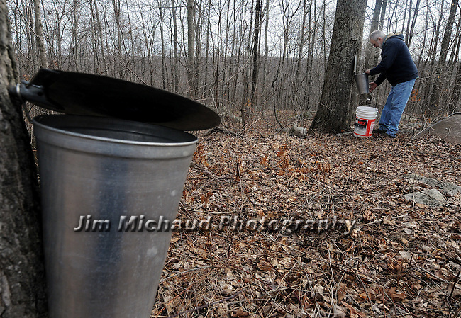 Russ Schaller works collecting sap at his small farm in Hebron, Wednesday, Feb. 22, 2012. Schaller collected 300 gallons of sap Wednesday that could yield 6 or more gallons of maple syrup. Schaller runs his Woody Acres Sugarhouse mostly as a hobby producing about 50 gallons of syrup a season he sells locally. (Jim Michaud/Journal Inquirer)
