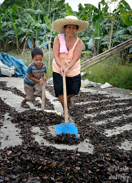 A woman and a boy turn banana pieces in a drying yard in the village of Baclog in the Compostela Valley on Mindanao Island in the southern Philippines. The dried banana pieces are turned into animal feed.