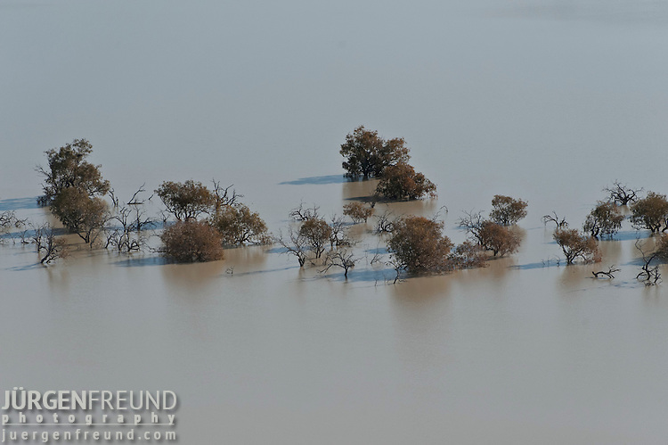Aerial - Flooded Strzelecki Desert in Coongie Lakes National Park