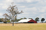 Red barn and oaks, fence and pasture, eastern Texas.
