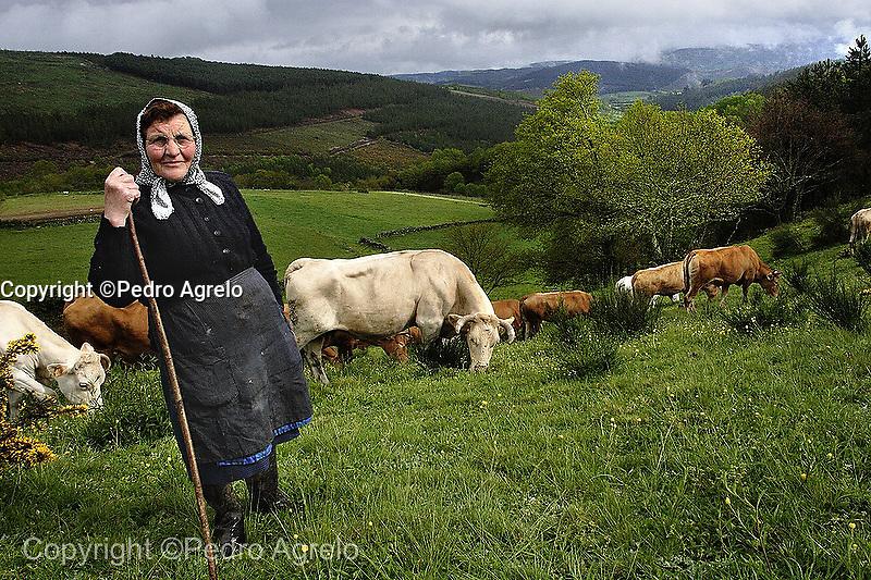 Una mujer con sus vacas en A Lastra, Lugo
