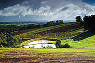 Image Ref: YV166<br />