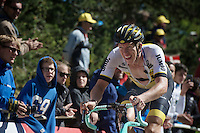 Classics/cobbles specialist Sep Vanmarcke (BEL/LottoNL-Jumbo) finishes an impressive 8th up Mont Ventoux<br /> <br /> stage 12: Montpellier - Mont Ventoux (shortened stage due to wind until Chalet Reynard; 178km)<br /> 103rd Tour de France 2016