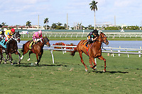 January 17, 2015:  Manchurian High (FL) with jockey Luis Saez on board comes from last place to win the Sunshine Millions Turf at  Gulfstream Park in Hallandale Beach, Florida. Liz Lamont/ESW/CSM