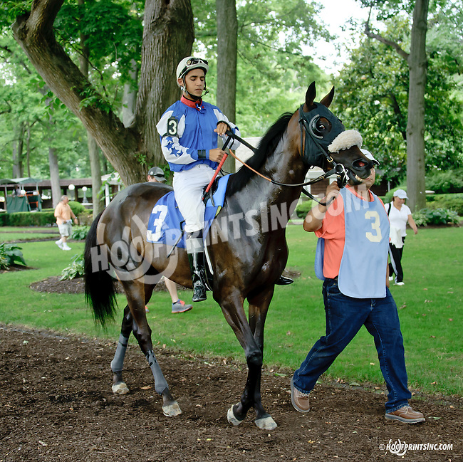 Malabar Anne at Delaware Park on 7/23/14