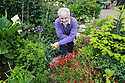 Very Rev Dr Norman Hamilton OBE at home in his garden in Ballymena, County Antrim, Wednesday, June 12, 2019.  (Photo by Paul McErlane for Belfast Telegraph)
