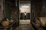 Venezia, Isola di San Michele. L' associazione Laguna nel Bicchiere, guidata da Flavio Franceschet, si occupa del recupero delle vigne nelle Isole della Laguna e nel centro storico di Venezia. Nella foto Flavio Franceschet