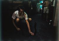 Un cinese con sigaretta presenta un serpente a sonagli (negozio di serpenti per uso alimentare)