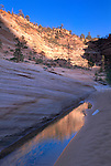 Reflection in water puddle below Checkerboard Mesa, along the Zion - Mt. Carmel Highway, Zion National Park,UTAH