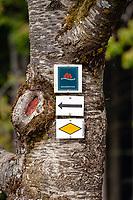 Germany, Baden-Wurttemberg, Black Forest, near Oberharmersbach: resort at Central/North Black Forest Nature Park - hikers to Brandenkopf mountain | Deutschland, Baden-Wuerttemberg, Schwarzwald, bei Oberharmersbach: Urlaubsort im Naturpark Schwarzwald Mitte/Nord - Wanderwegweiser auf dem Schwarzwald Geniesserpfad