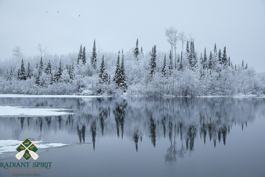 &quot;Winter Wonderland in Spring&quot;<br /> An overnight dusting of snow makes for a magical winter wonderland in the morning. The changing seasons brought the return of migrating waterfowl as I awaited ice-out on the lake.<br /> ~ Day 37 of Inspired by Wilderness: A Four Season Solo Canoe Journey