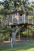 A fantastic treehouse has been built into a sturdy tree in the garden